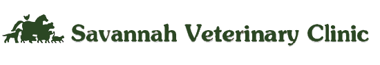 Savannah Veterinary Clinic logo